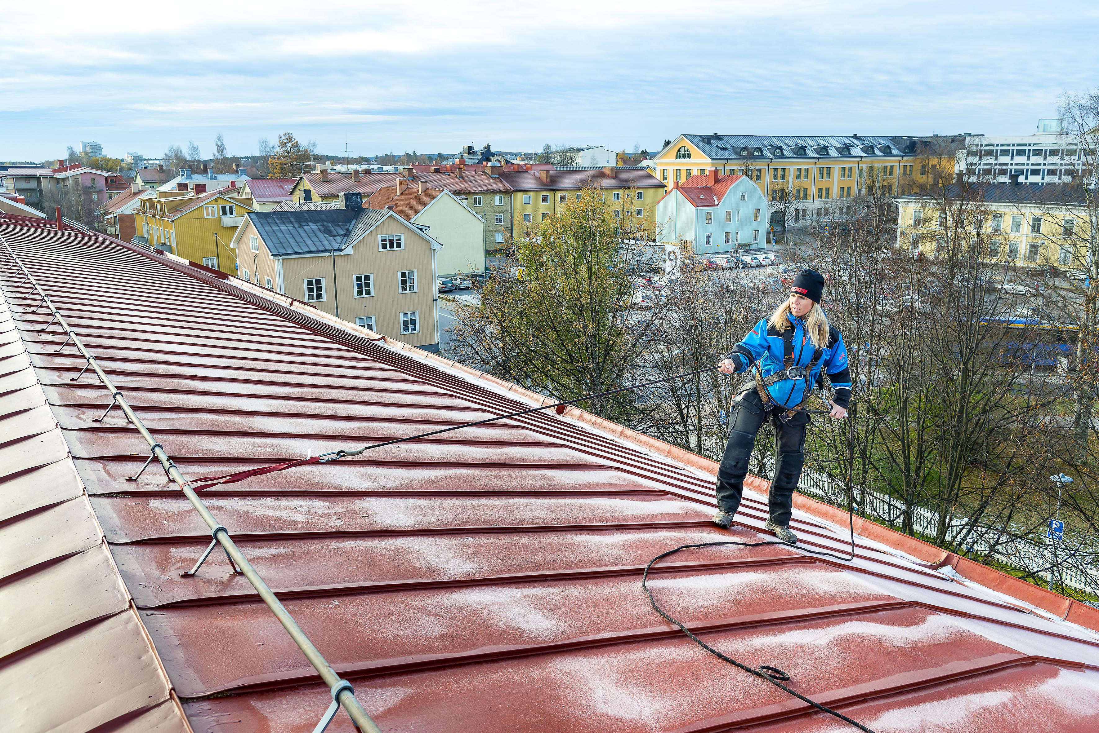 Snödrottningen på taket